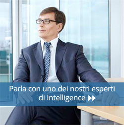 Brand Intelligence Consulting
