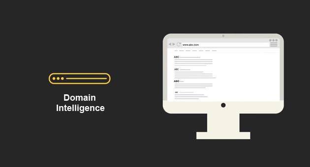 domain-intelligence.jpg